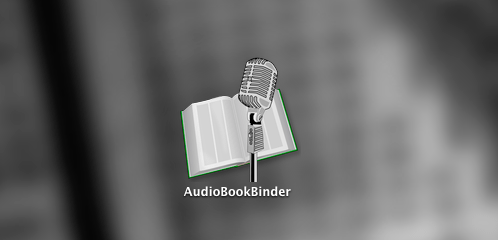 Audiobook Binder Title