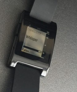 Pebble Displayfehler